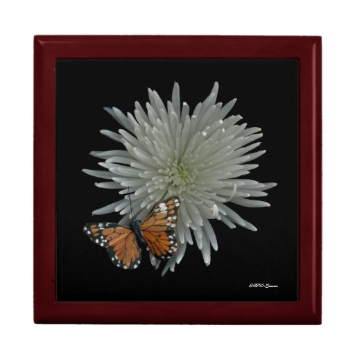 Butterfly Box Jewelry Boxes