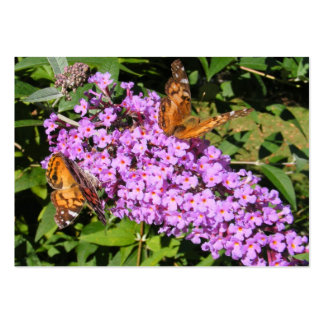 Butterfly Buddies ~ ATC Large Business Cards (Pack Of 100)