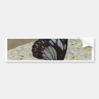butterfly car bumper sticker