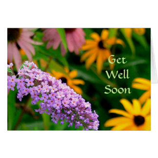 BUTTERFLY BUSH AND BLACK-EYED SUSANS/GET WELL CARD