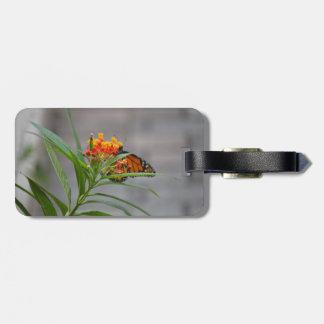 butterfly bush monarch behind . bag tag