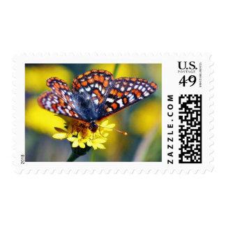 Butterfly Butterflies Bugs Flowers Stamps