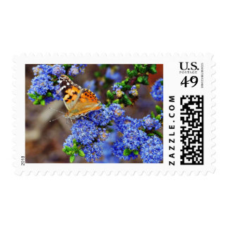 Butterfly Butterflies Insects Postage
