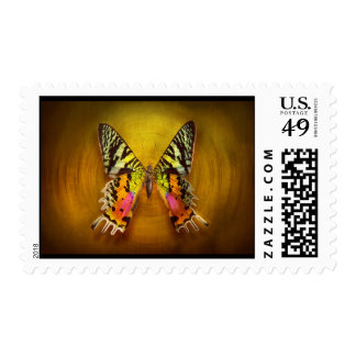 Butterfly - Butterfly of happiness Postage Stamp