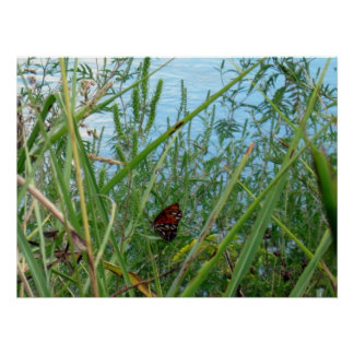 Butterfly by the River Poster