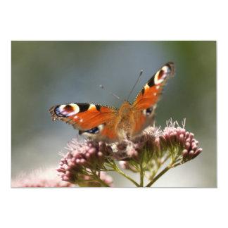 butterfly card