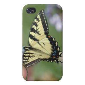 butterfly case iPhone 4/4S cases