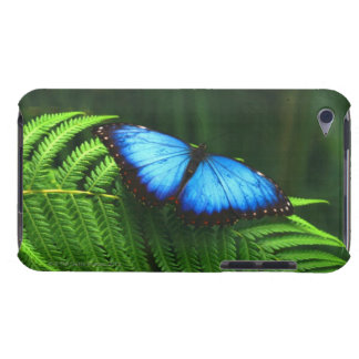 butterfly Case-Mate iPod touch case