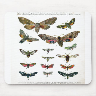 Butterfly Chart Mousepad