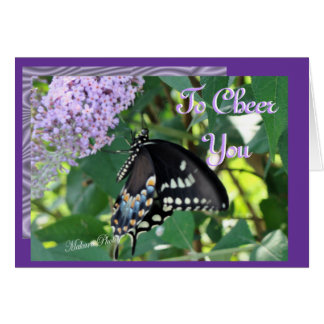 Butterfly Cheer-customize Greeting Card