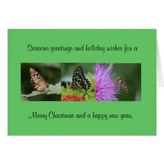 Butterfly Christmas Card