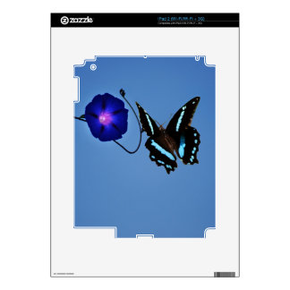 Butterfly class skins for iPad 2