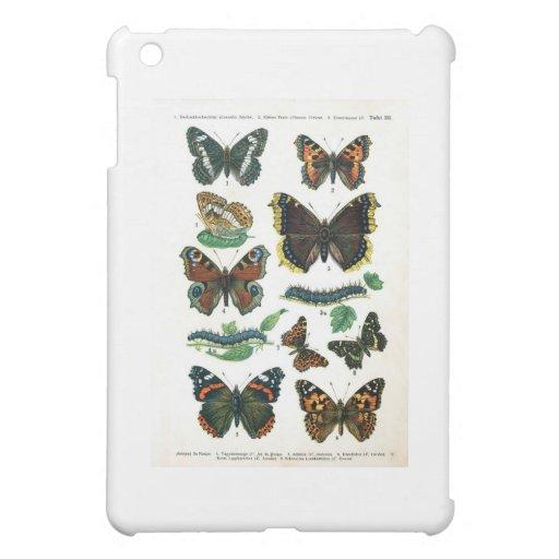 butterfly-clip-art-19