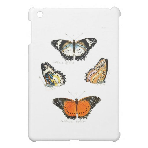 butterfly-clip-art-20