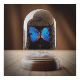 Butterfly Cloche Wall Art