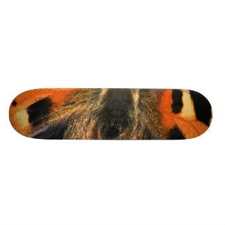 Butterfly close up skateboard decks