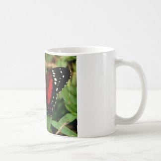 Butterfly Coffee Mug