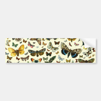 Butterfly Collage Car Bumper Sticker
