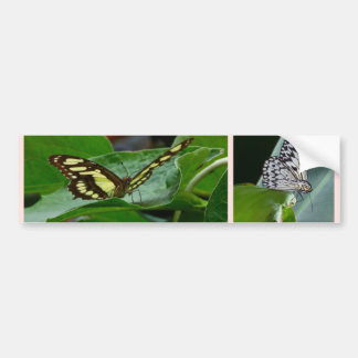 Butterfly Collage Bumper Stickers