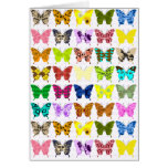 Butterfly Collage Cards