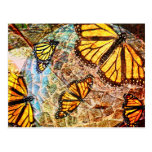 Butterfly collage postcard