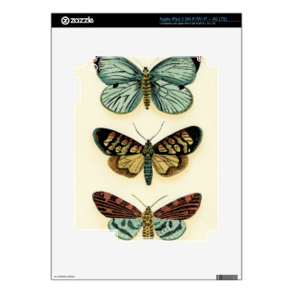 Butterfly Collection by Chariklia Zarris Decals For iPad 3