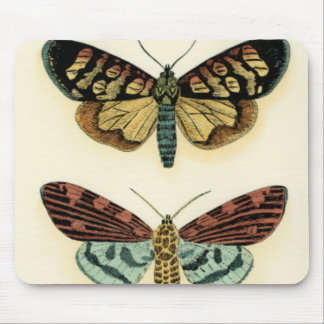 Butterfly Collection by Chariklia Zarris Mouse Pad