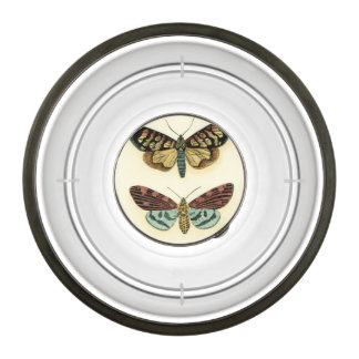 Butterfly Collection by Chariklia Zarris Pet Bowl