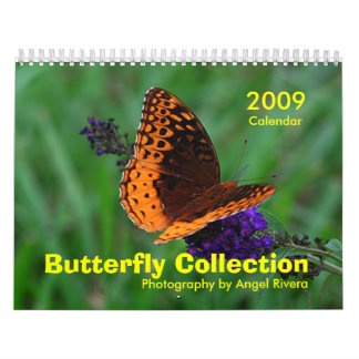Butterfly Collection Calendar