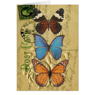 Butterfly collection card