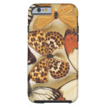 Butterfly collection iPhone 6 case