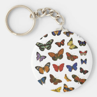 Butterfly Collection Key Chain