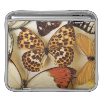Butterfly collection sleeve for iPads