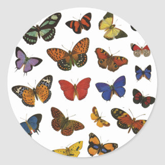 Butterfly Collection Stickers