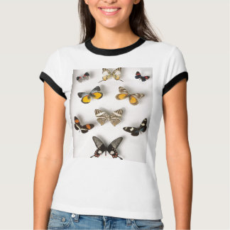 Butterfly-collection t-shirt