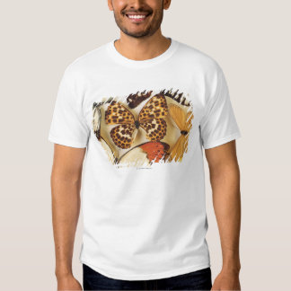 Butterfly collection t shirt