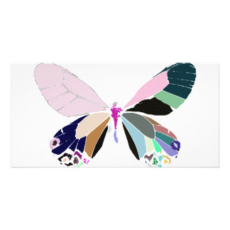 butterfly colors photo card