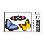 Butterfly Combo Postage