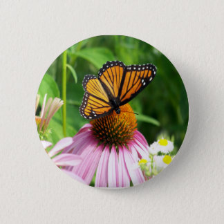 Butterfly  Cone Flower Button