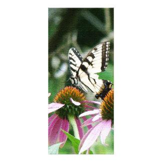 Butterfly Coneflowers Flowers Floral Wildlife Rack Card