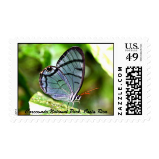 Butterfly, Corcovado National Park, Costa Rica Stamp
