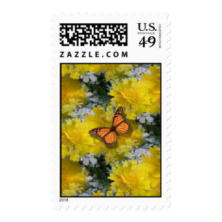 Butterfly  Coreopsis  Flowers Postage Stamps