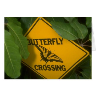 Butterfly Crossing Greeting Card