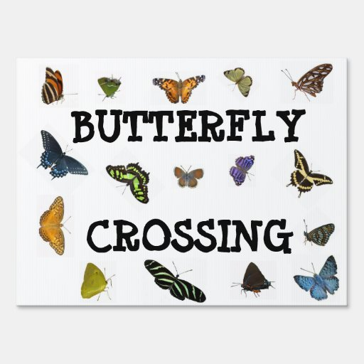 Butterfly Crossing Sign Zazzle