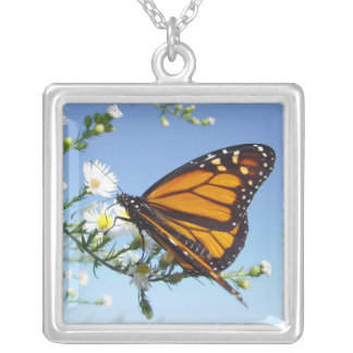 Butterfly Daisies, Necklace