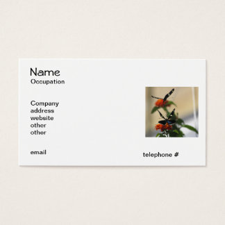 Butterfly Dance 3 Business Cards