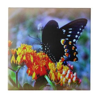 Butterfly Decorative Tile