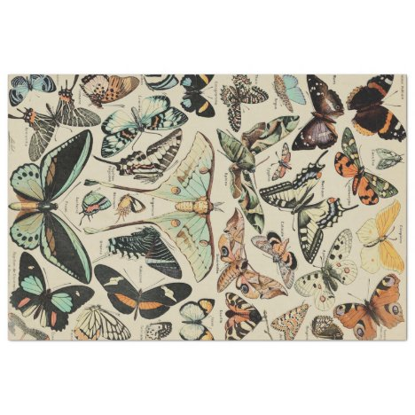 Butterfly Decoupage Tissue Paper