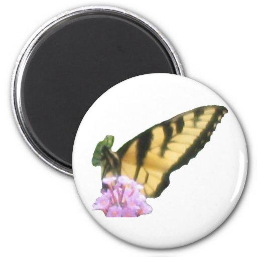 Butterfly Dreaming! Fridge Magnets