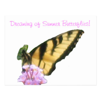 Butterfly Dreaming! Postcard